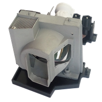 ACER EC.J4301.001 Лампа з модулем