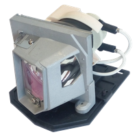 ACER EC.K0100.001 Лампа з модулем