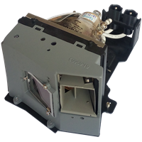 OPTOMA BL-FU250D (SP.81D01.001) Лампа з модулем