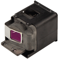 OPTOMA BL-FU310A (FX.PM584-2401) Лампа з модулем