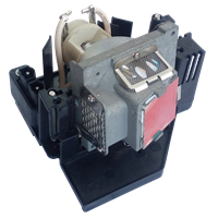 OPTOMA BL-FP280A (DE.5811100173) Лампа з модулем