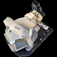 OPTOMA EC300ST Лампа з модулем