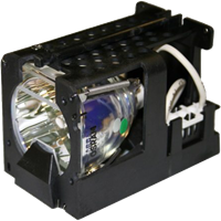 OPTOMA EzPro 718 Лампа з модулем