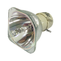 OPTOMA EzPro 763 Лампа без модуля