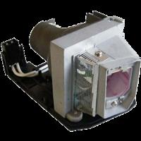 SANYO PDG-DWL100 Лампа з модулем