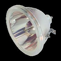 TOSHIBA TLP-710E Лампа без модуля