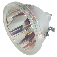 TOSHIBA TY-G1E Лампа без модуля